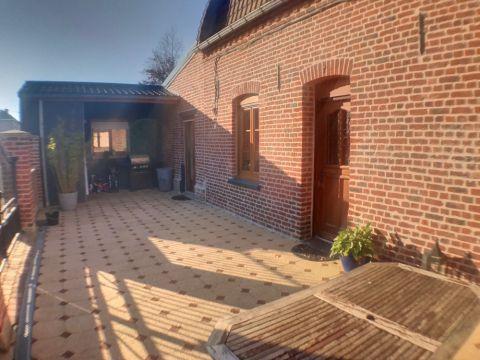 Magnifique Flamande dans les Weppes / n° 5989